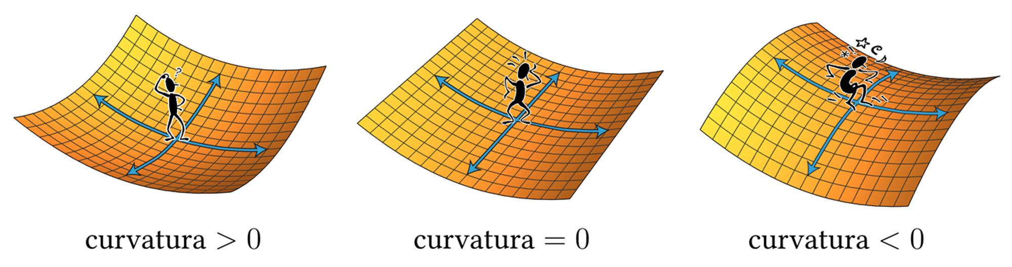 curvatura_clipart.png